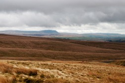 Pen-y-ghent from the foot of Whernside